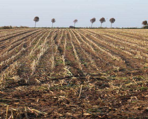 Landbewirtschaftung